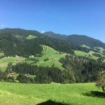 Zillertal Sommer Bergsteigen Zirbel